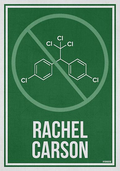 Rachel Carson poster